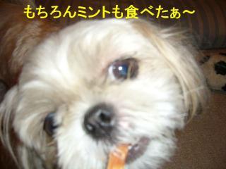 mint_20070906_1
