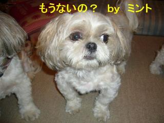 mint_20070906_3