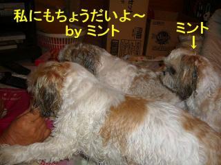 oyako_20070907_2
