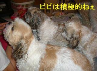 oyako_20070907_3