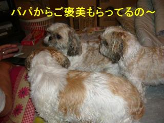 oyako_20070907_1