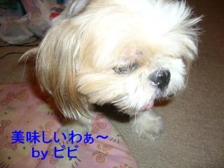 bibi_20070912_1
