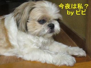 bibi_20070915_1