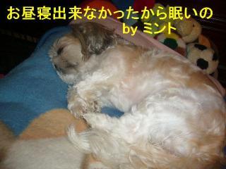 mint_20070916_2