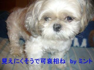 mint_20070917_1