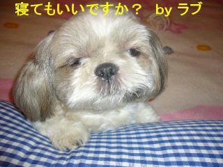 love_20070918_2