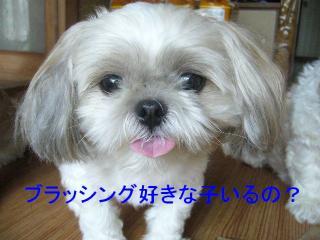 mint_20070923_3