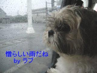 love_20070924_14
