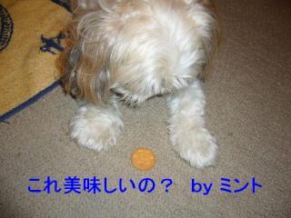 mint_20070926_1
