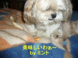 mint_20070926_3