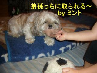 mint_20070928_2