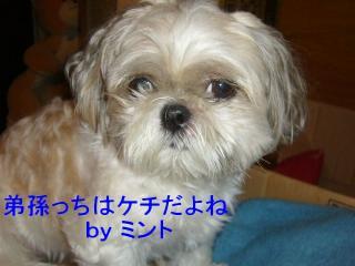 mint_20070928_3