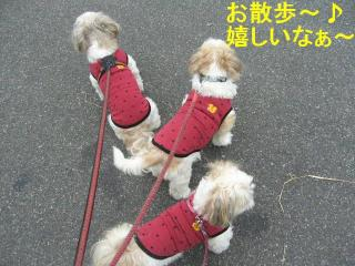 oyako_20070929_1