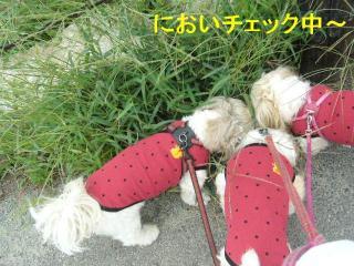 oyako_20070929_2