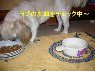 mint_20071005_5