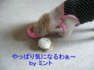 mint_20071014_11