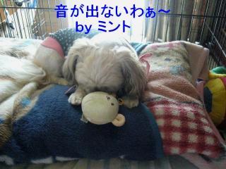 mint_20071014_13