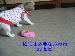 bibi_20071014_12