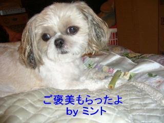 mint_20071012_2