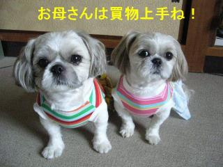 lovemint_20071014_22