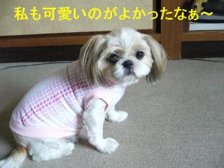bibi_20071014_21