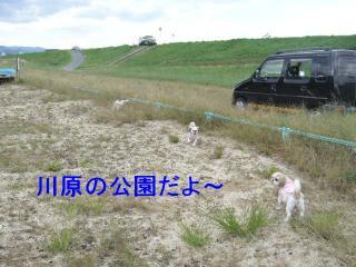 oyako_20071015_1