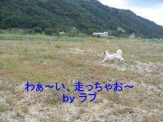 love_20071015_2
