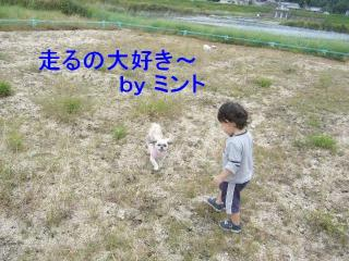 mint_20071015_1