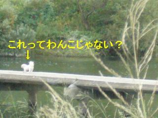 mint_20071016_1