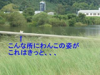 mint_20071016_2