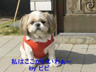bibi_20071020_1