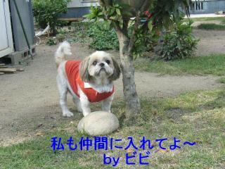 bibi_20071020_4