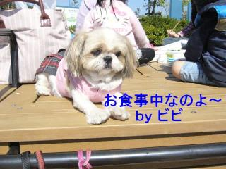 bibi_20071022_4