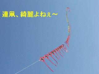 tako_20071022_1