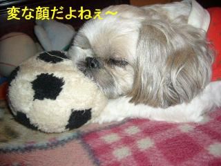 love_20071025_3