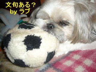 love_20071025_4