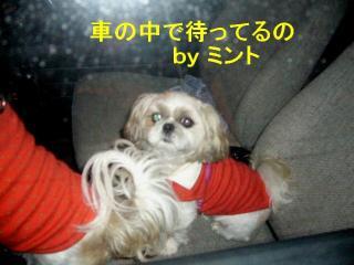 mint_20071026_7