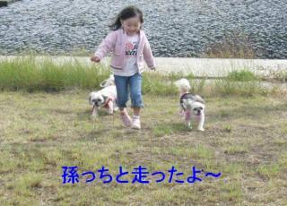 lovemint_20071030_1