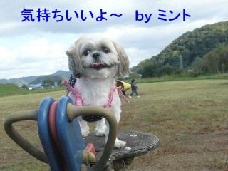 mint_20071031_1