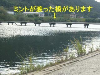 hashi_20071031_11