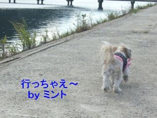 mint_20071031_13