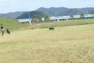 wan_20071031_11
