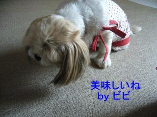 bibi_20071027_1