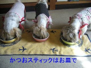 oyako_20071027_1