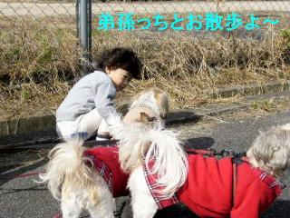 oyako_20071104_1