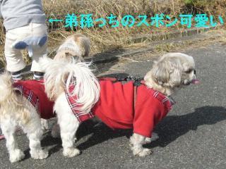 oyako_20071104_2