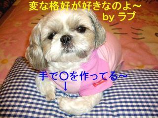 love_20071106_5