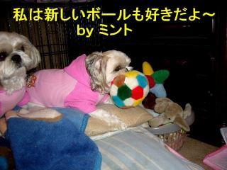 mint_20071107_2