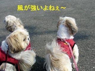 oyako_20071111_1