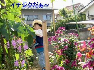 riku_20071111_3
